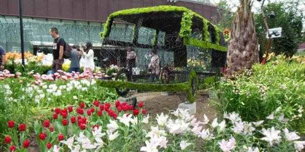 GardensByTheBay-FlowerDome